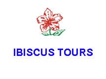 IBISCUS TOURS IN  54, Orfanidou Str. ( ALEXIA HOTEL)