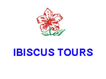 Ibiscus Tours S.A IN  54, Orfanidou Str.